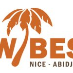 Wibes Shoes