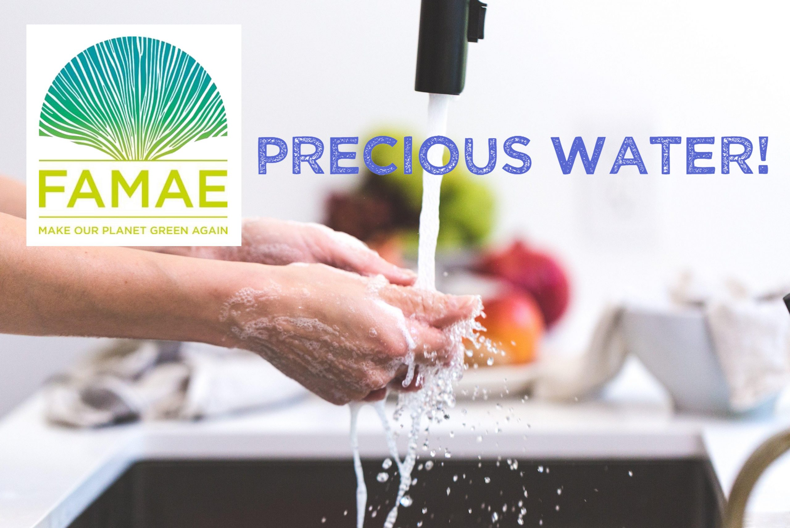PRECIOUS WATER challenge: Participate to make the planet green again